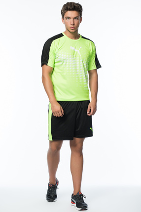 Erkek Şort - IT evoTRG Shorts Puma Black-Green Gecko -